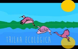 trilha-ecologica-1